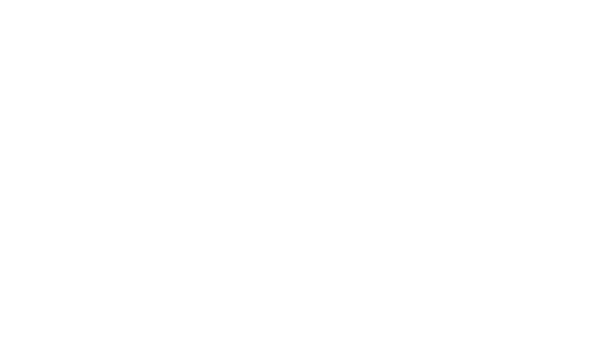 Informatica Organizzativa: circolo virtuoso
